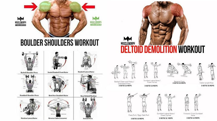 Shoulder Workouts - The Complete Guide To Delts Training