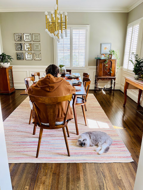 girl at the dining room table with a laptop; cat at her feet