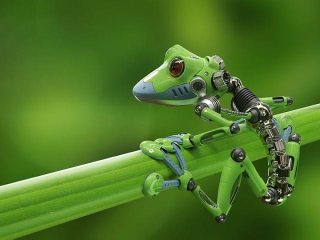 प्रकृति ने हम इंसानों को नए आविष्कारों के लिए कैसे प्रेरित किया है?