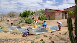 Dessalinizador de água da UEPB que usa energia solar ganha prêmio nacional