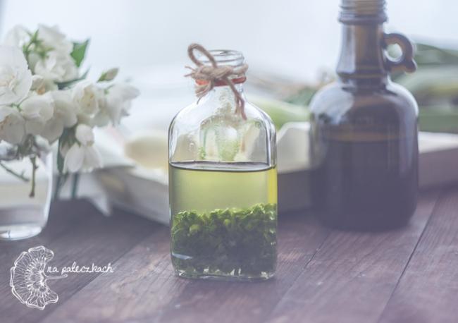 zielona cebulka