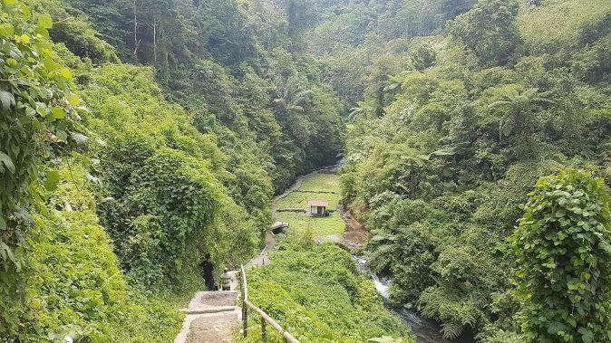 Jalan setapak menuju air terjun Telunjuk Raung