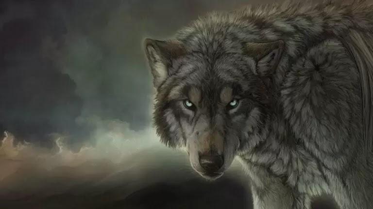Amarok ou Amaroq o Lobo