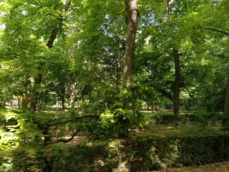 que-ver-aranjuez-jardin-isla