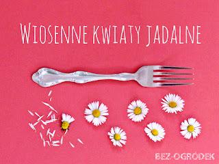 jadalne kwiaty na talerzu