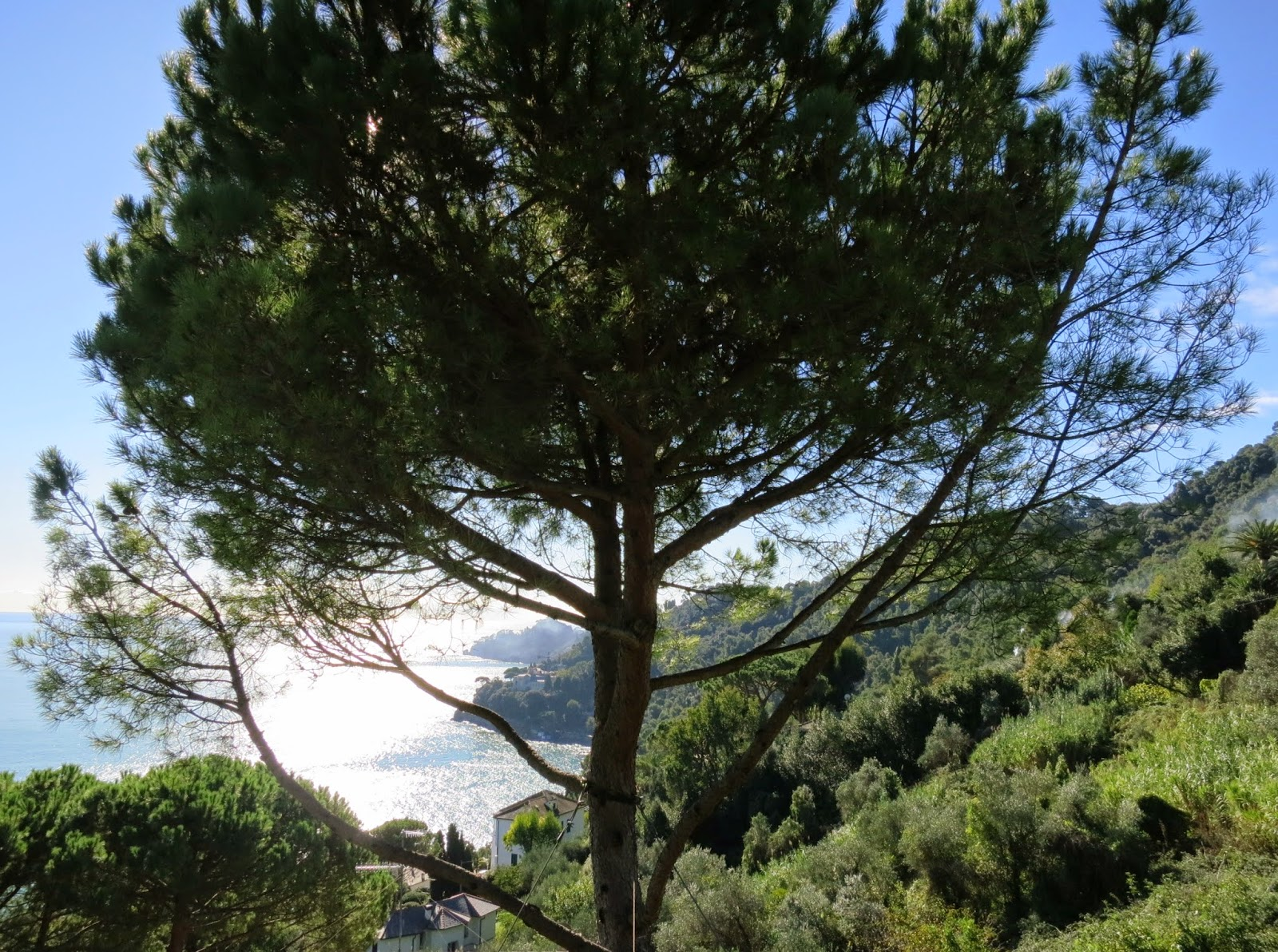 View from Madonna della Neve toward Portofino