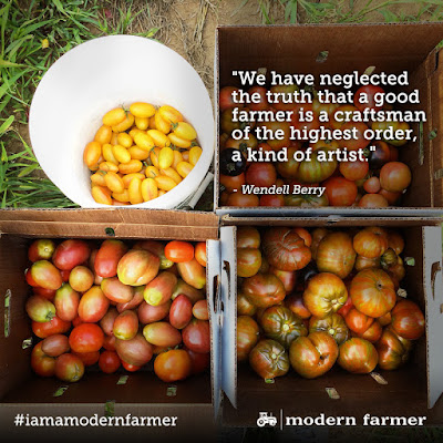 We Have Neglected The truth That A Good Farmer