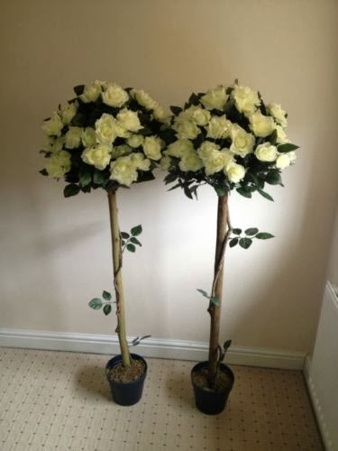 4ft Rose Tree €10