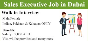 Sales Executive Job Vacancy for Electronic Products in JVC, Dubai.