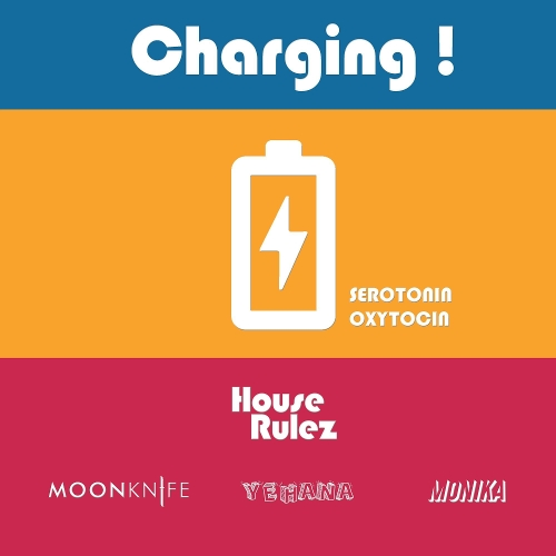 House Rulez – Charging! – Single