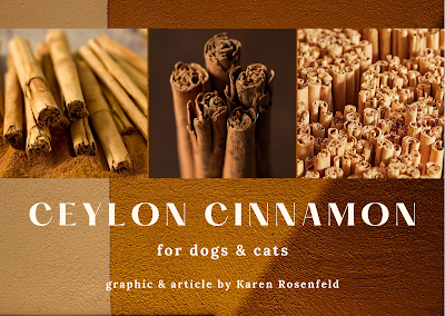 Cinnamon for Dogs and Cats