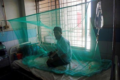 Fallecen más de 1.500 personas por dengue en Filipinas este año