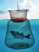 Su yüzeyinde duran içinde yakalanmış bir balık olan kırmızı şamandıralı tel bir livar balık sepeti