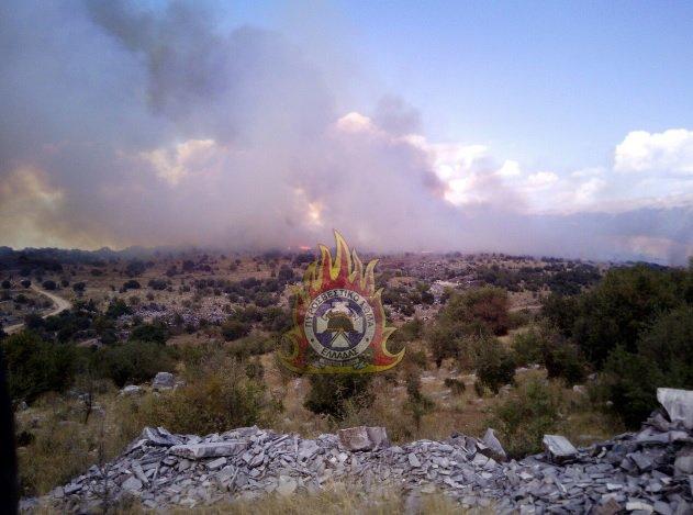 55 δασικές πυρκαγιές ξέσπασαν σε όλη τη χώρα την Δευτέρα