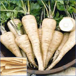 Content in parsnip and beneficial to heart, eye & stomach