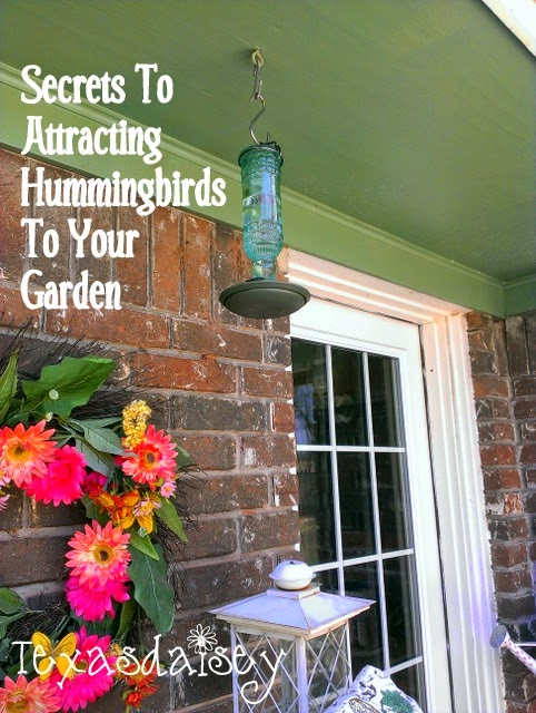 How to attract hummingbirds to your yard 1