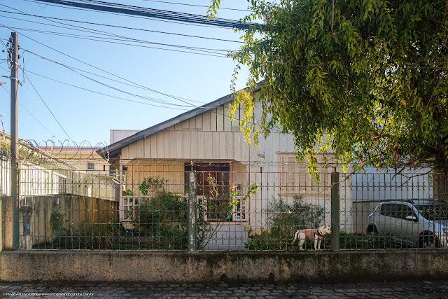 Casa de madeira com um cão no jardim