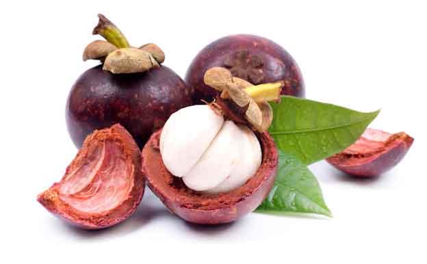 Asal-usul julukan queen of fruits pada manggis