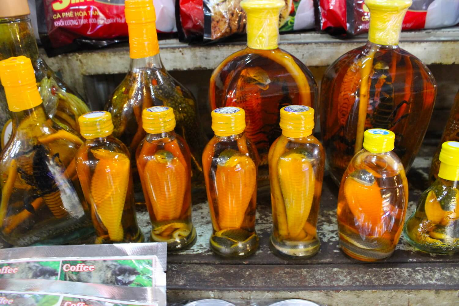 snake wine at ben thanh market