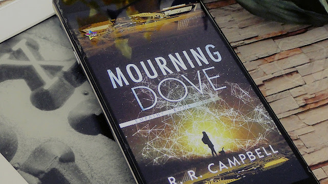Mourning Dove by R. R. Campbell