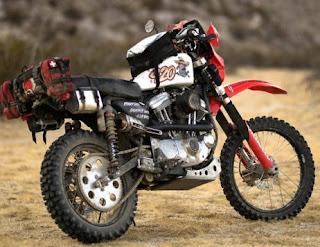 the frijole 883 desert sportster