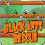 Black Ants Rescue Game