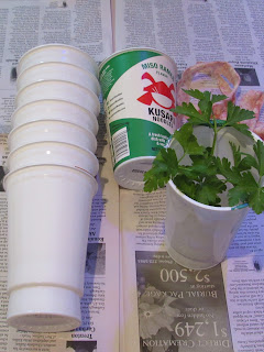 Ramen cup self-watering planters- supplies