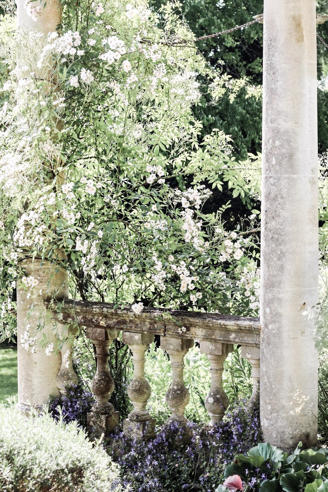 Beautiful white flowers surrounding pillars