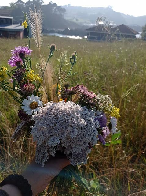 diy-flores-secas