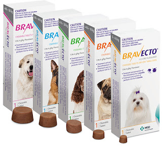 A photo of the various pack sizes of Bravecto Chew for Dogs