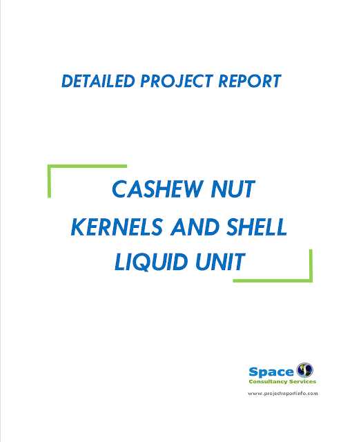 Project Report on Cashew nut Kernels and Shell Liquid Unit