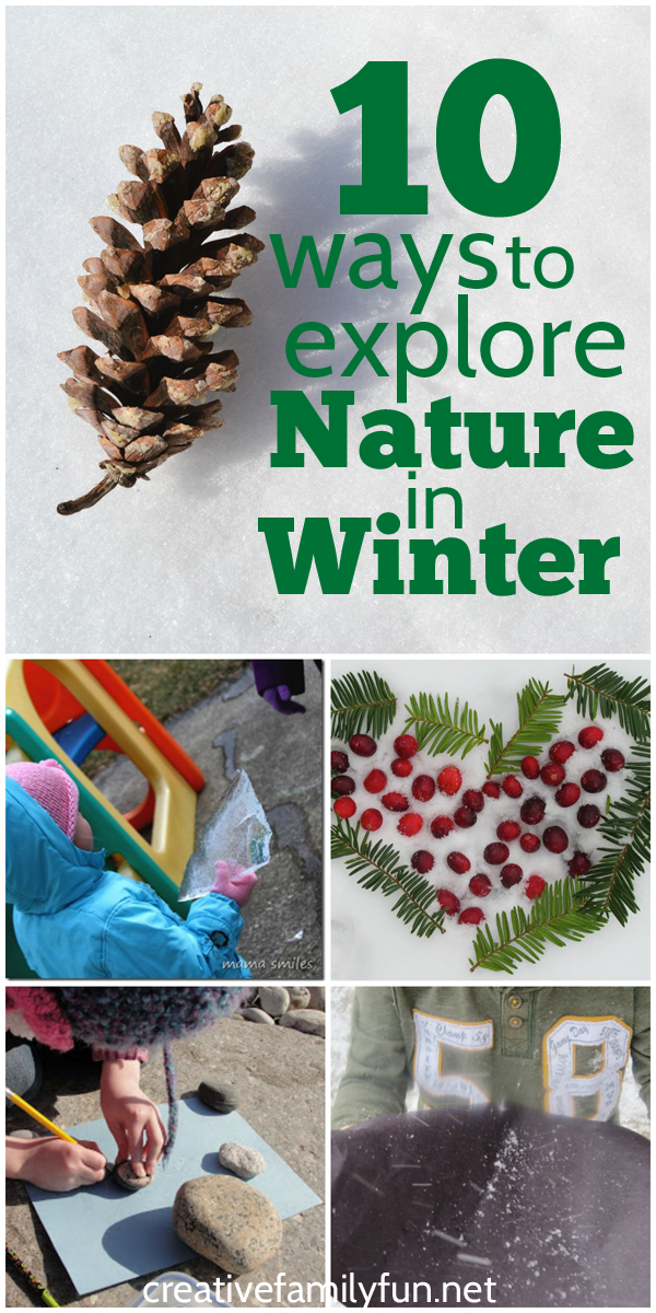 Just because it's winter, doesn't mean you need to give up your nature studies. Here are 10 fun kids activities to help you explore nature in the winter.