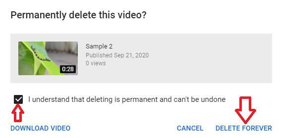 Confirm to delete video