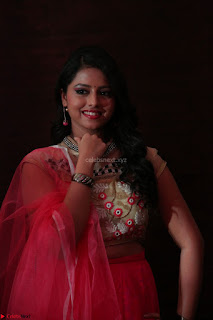 Geethanjali sizzles in Pink at Mixture Potlam Movie Audio Launch 008.JPG