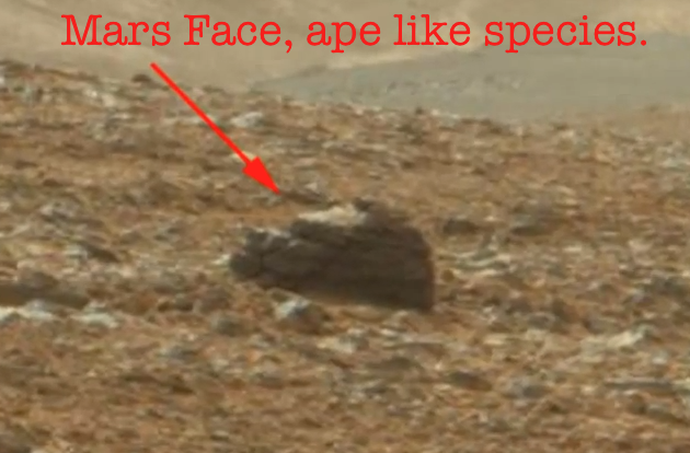 UFO SIGHTINGS DAILY: Ape-Like Face Discovered On Mars ...