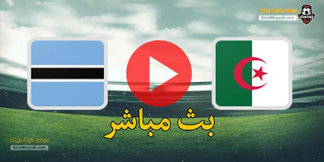 نتيجة مباراة الجزائر وبتسوانا اليوم 29 مارس 2021 في تصفيات كأس أمم أفريقيا