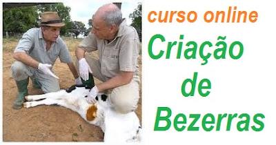 Curso Online Medicina de Produção na Criação de Bezerras da gestação aos 5 dias de vida - Veterinária