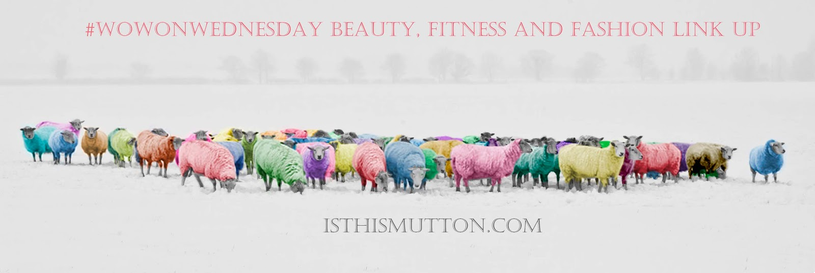 Colourful sheep, the masthead for over 50s style blog Is This Mutton, promoting the weekly #WowOnWednesday link up