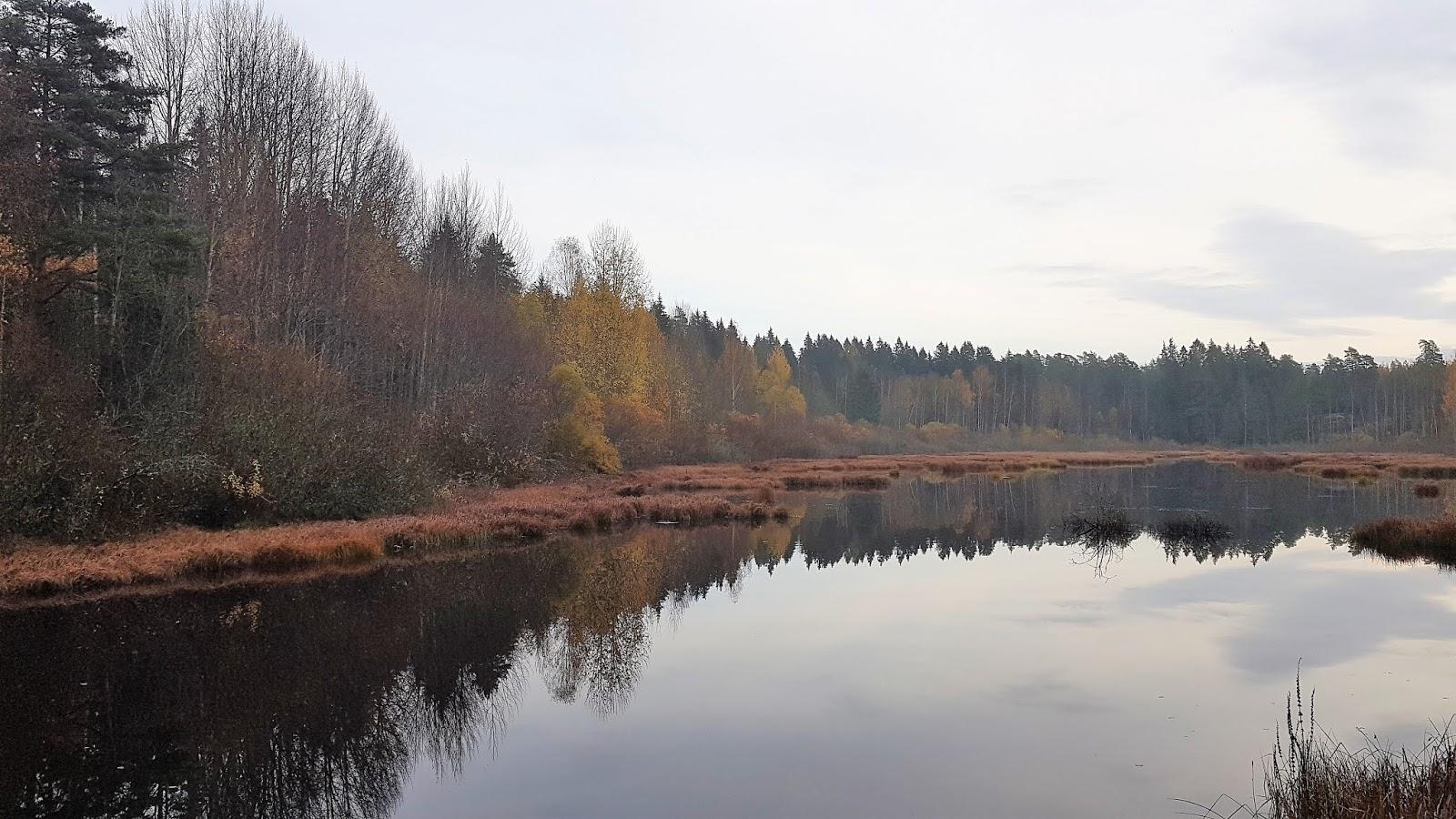 Keskuspuiston Tikankierros Espoossa