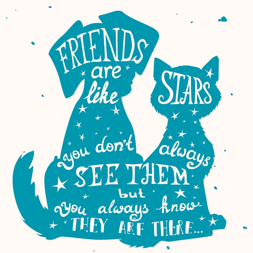 Good friends are like stars You don t always see them but you know they are always there.