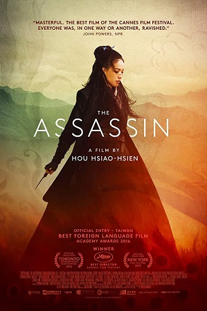 The Assassin (2015) Full Hindi Dual Audio Movie Download 480p 720p Bluray