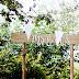 5 rzeczy, które zrobiłabym inaczej organizując wesele