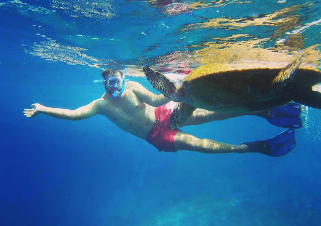 snorkeling bersama penyu di gili trawangan
