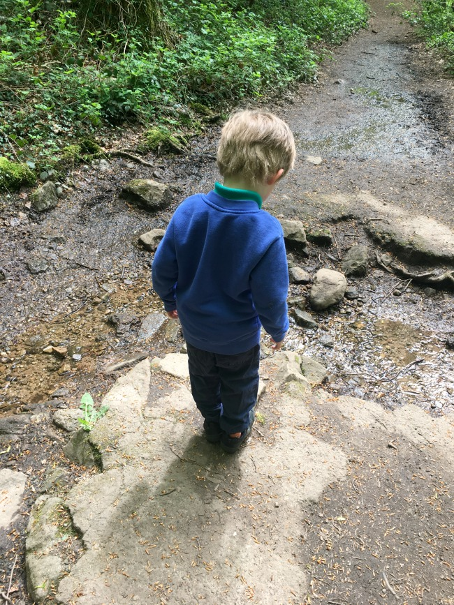 boy-stood-near-a-stream-at-The-Wenallt