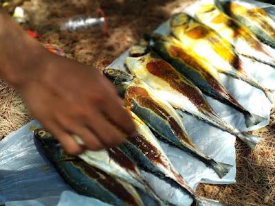 ikan, sebelum dilahap