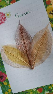 flowpetitsplaisirs-d-automne-feuilles