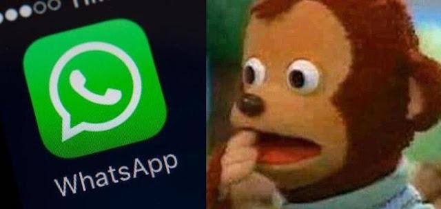Preguntas y respuestas sobre las nuevas políticas de WhatsApp