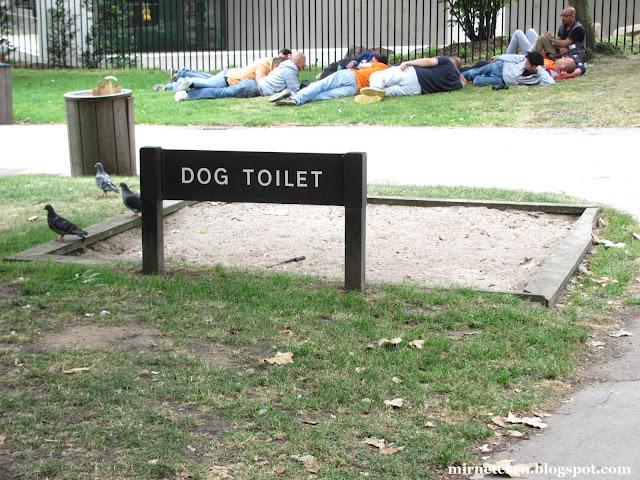 Один день в Лондоне: туалет для собак