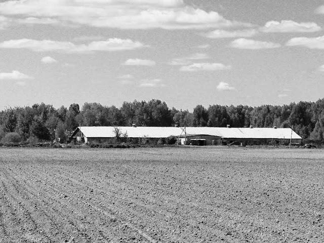 Возобновление аренды земли на неопределенный срок