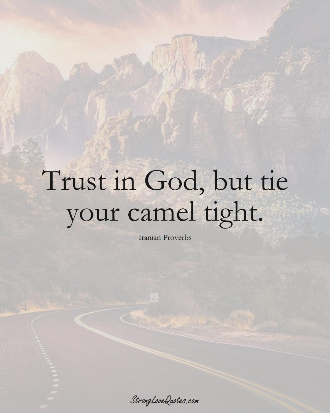 Trust in God, but tie your camel tight. (Iranian Sayings);  #MiddleEasternSayings